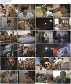 Spring Fever U.S.A. / Lauderdale (1989)