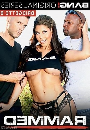 Bridgette B Gets Her Holes Drilled By Two Dicks [SD]