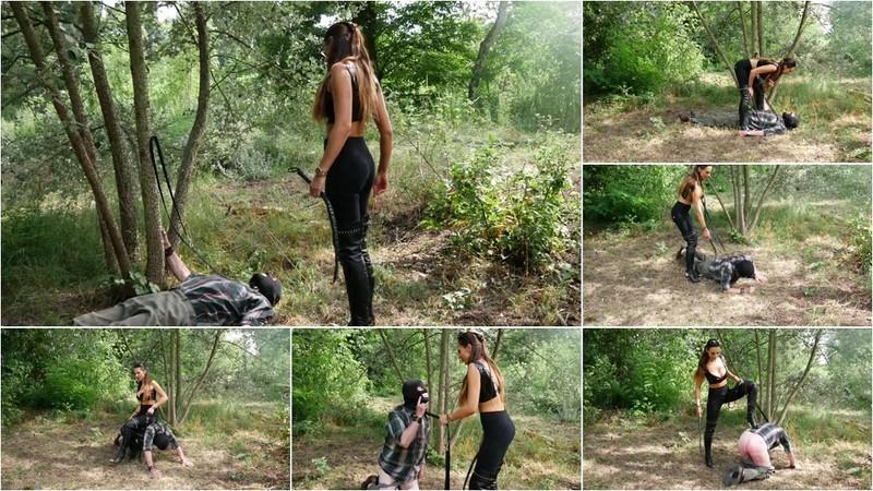 Oldman Trampling (Alten Sack Im Wald Getrampelt) [FullHD 1080P]