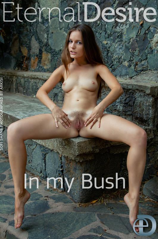 Sofi Shane - In My Bush (2020-02-21)
