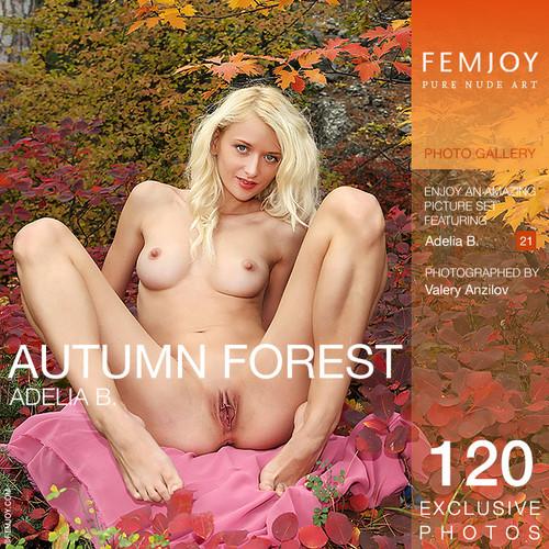 Adelia B - Aautumn forest (x120)