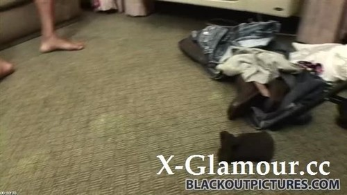 Hot Sluts Going Black [HD]