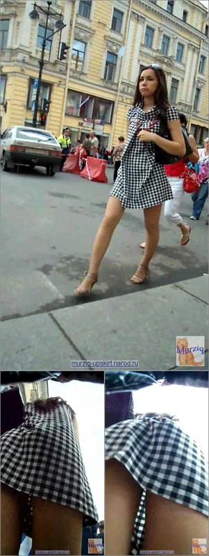 Upskirt No Panties 4213