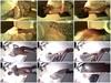 421uh08232ex - v98 - 60 videos