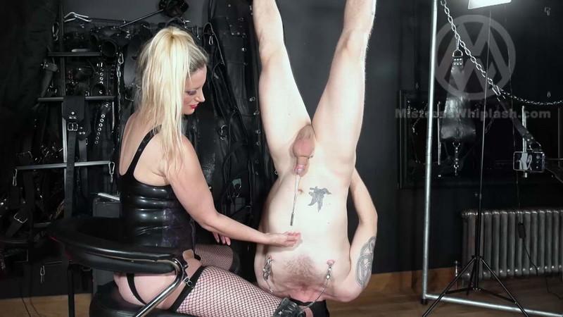 Mistresswhiplash - Wl1547 : Huge Sounding Orgasm In Inverted Suspension For Nikki Whiplash'S Slave [FullHD 1080P]
