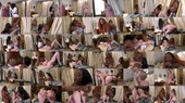 Zebra Girls - Jayden Starr, Lexi Lore and Victoria Cakes