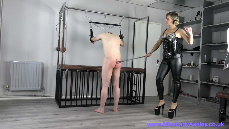 Miss Ashley - Mla Punisher'S Slaves Ass [FullHD 1080P]