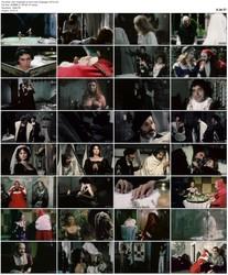 Dein Vergnugen ist auch mein Vergnugen (1973)
