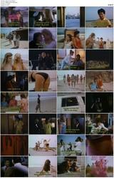 Beach Fever (1988)