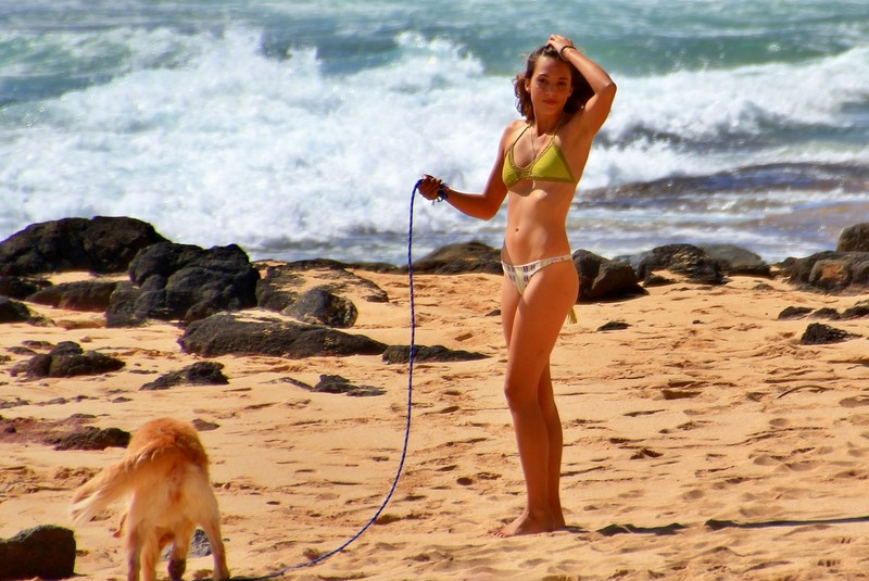 beautiful brunette playing with her dog on the beach