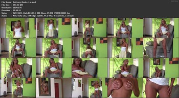 Brittany Bod - I Like Big Boobs And I Cannot Lie, 576p
