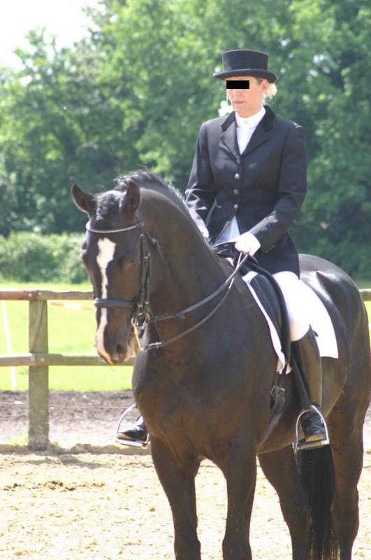 horse riding contest girls voyeur album
