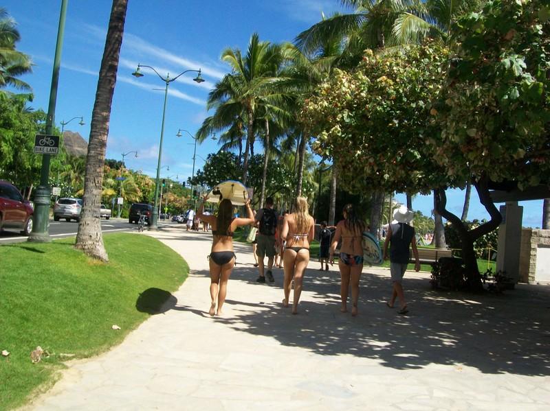 surfing girls in bikinis