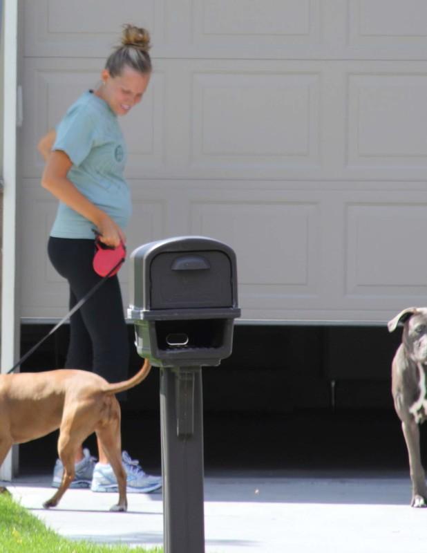 2 dog walking milfs in yoga pants & yoga shorts